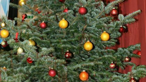 Frohe Weihnachten und alles Gute für das Jahr 2010