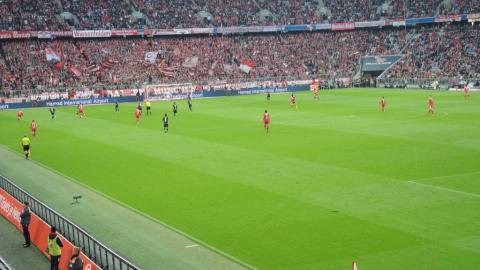 FC BAYERN  vs  1.FSV Mainz 05