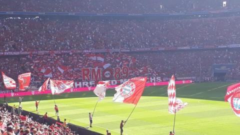FC BAYERN  vs  1. FC Mainz 05